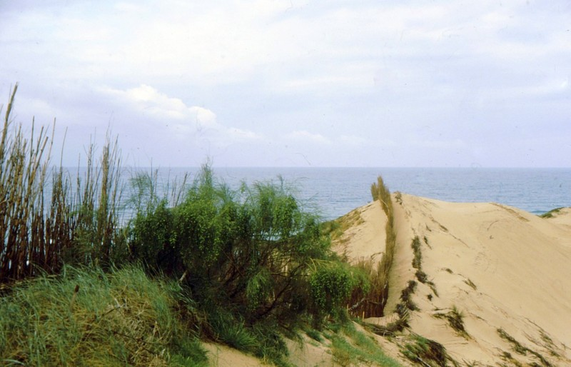 1984 Andalousie - Punta Paloma