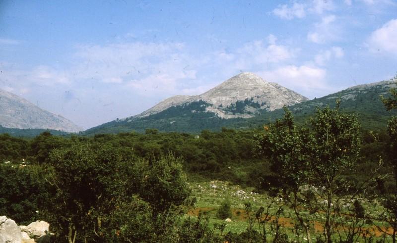 1984 Andalousie - La montagne aux Pinsapos